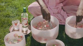 Smirnoff Zero Sugar Infusions TV Spot, 'Guided Meditation' Featuring Dave Bautista - Thumbnail 3