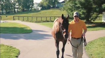 Claiborne Farm TV Spot, 'Blame: Over 50 Stakes Horses' - Thumbnail 2