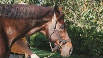 Claiborne Farm TV Spot, 'Blame: Over 50 Stakes Horses' - Thumbnail 3