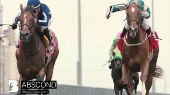 Claiborne Farm TV Spot, 'Blame: Over 50 Stakes Horses' - Thumbnail 8