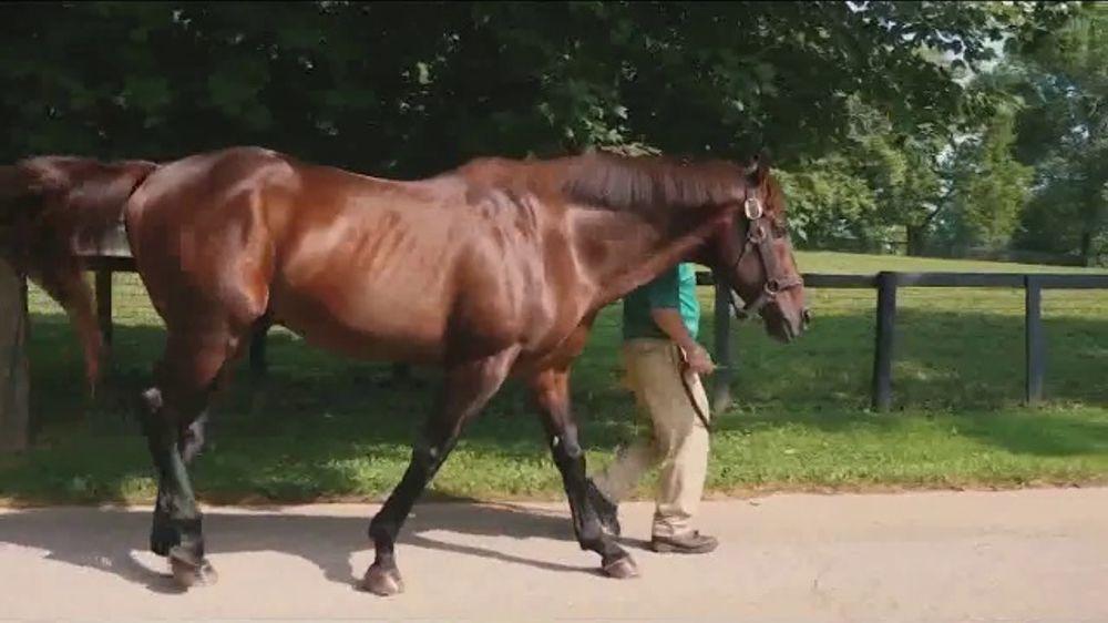 Claiborne Farm TV Commercial, 'Flatter: Success'