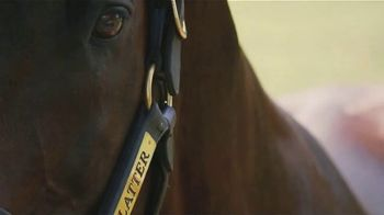 Claiborne Farm TV Spot, 'Flatter: Success' - Thumbnail 9