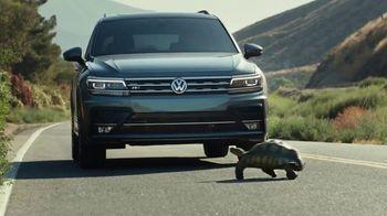 2020 Volkswagen Tiguan TV Spot, 'Tortoise' [T2] - 50 commercial airings