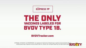 Express FP TV Spot, 'BVDV Type 1B Vaccine' - Thumbnail 7