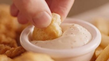 Dairy Queen Chicken and Biscuits Basket TV Spot, '100 Percent' - Thumbnail 5
