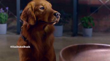 Bush's Best Baked Beans TV Spot, 'Savory Loves Sweet Hot Dog' - Thumbnail 8