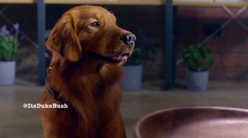 Bush's Best Baked Beans TV Spot, 'Savory Loves Sweet Hot Dog' - Thumbnail 9