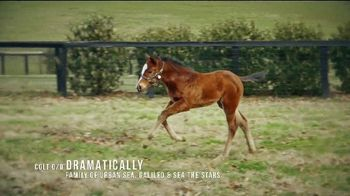 Coolmore America TV Spot, 'Justify: First Foals' - Thumbnail 4