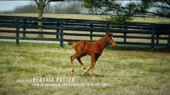 Coolmore America TV Spot, 'Justify: First Foals' - Thumbnail 5