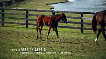 Coolmore America TV Spot, 'Justify: First Foals' - Thumbnail 6