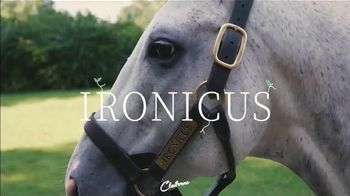 Claiborne Farm TV Spot, 'Ironicus'