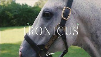 Claiborne Farm TV Spot, 'Ironicus' - Thumbnail 1