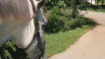 Claiborne Farm TV Spot, 'Ironicus' - Thumbnail 3
