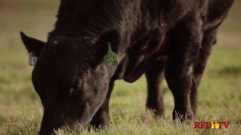 44 Farms Angus Steaks TV Spot, 'Believe' - Thumbnail 5