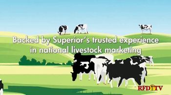 Superior Livestock Auction TV Spot, 'Video Auction'
