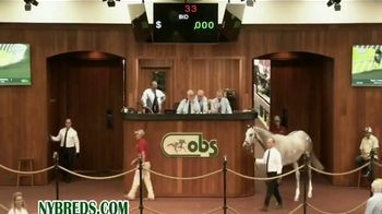 New York Thoroughbred Breeding and Development Fund TV Spot, 'Derby Dreams' - Thumbnail 7