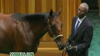 New York Thoroughbred Breeding and Development Fund TV Spot, 'Derby Dreams' - Thumbnail 9