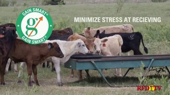 Gain Smart TV Spot, 'Healthy and Profitable Cattle' - Thumbnail 3
