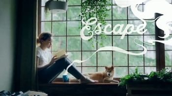 TJX Companies TV Spot, 'Spend Less. Discover More.' - 3836 commercial airings