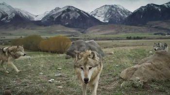 Blue Buffalo BLUE Wilderness TV Spot, 'Feed the Wolf: Earn Rewards' - Thumbnail 4