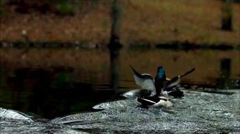 FOX Nation TV Spot, 'Duck Dynasty' - Thumbnail 5