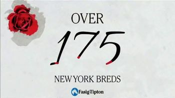 Fasig-Tipton Company TV Spot, '2020 Selected Yearlings Showcase: Extraordinary' - Thumbnail 5