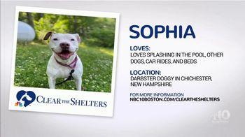 Clear the Shelters TV Spot, 'NBC 10 Boston: Sophia' - Thumbnail 3