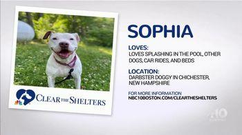 Clear the Shelters TV Spot, 'NBC 10 Boston: Sophia' - Thumbnail 5