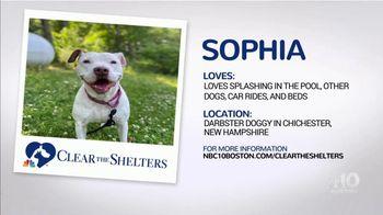 Clear the Shelters TV Spot, 'NBC 10 Boston: Sophia' - Thumbnail 6