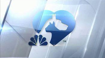 Clear the Shelters TV Spot, 'NBC 10 Boston: Sophia' - Thumbnail 7