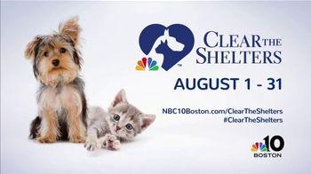 Clear the Shelters TV Spot, 'NBC 10 Boston: Sophia' - Thumbnail 9