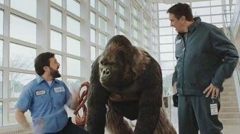 Clear Gorilla Glue TV Spot, 'Museum' - Thumbnail 3