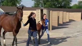 Rood & Riddle Equine Hospital TV Spot, 'Services and Treatment' - Thumbnail 2