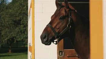Claiborne Farm TV Spot, 'Mastery: Undefeated'