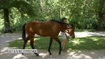 Claiborne Farm TV Spot, 'Runhappy: Pedigree' - Thumbnail 3