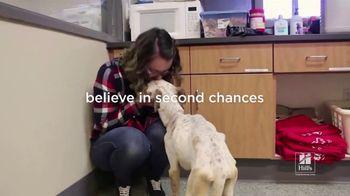 Hill's Pet Nutrition TV Spot, 'Second Chances' - Thumbnail 1