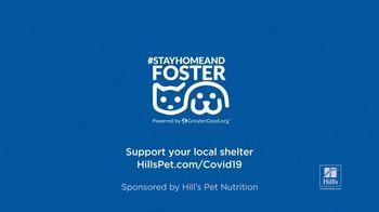Hill's Pet Nutrition TV Spot, 'Second Chances' - Thumbnail 7