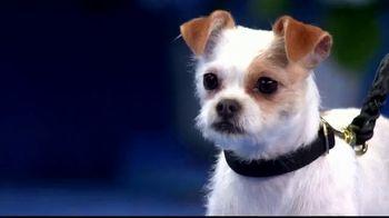 Hallmark Channel TV Spot, 'Adoption Ever After' Featuring Rodney Peete