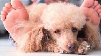 Hill's Pet Nutrition TV Spot, 'Shelter' - Thumbnail 4