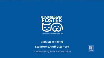 Hill's Pet Nutrition TV Spot, 'Shelter' - Thumbnail 8