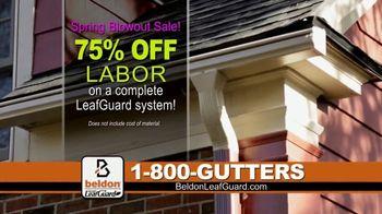 Beldon LeafGuard Spring Blowout Sale TV Spot, 'Spring and Fall' - Thumbnail 5