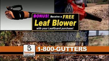 Beldon LeafGuard Spring Blowout Sale TV Spot, 'Spring and Fall' - Thumbnail 6