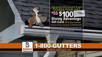 Beldon LeafGuard Spring Blowout Sale TV Spot, 'Spring and Fall' - Thumbnail 8