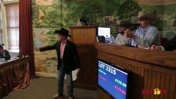 Superior Livestock Auction TV Spot, 'Dairy Influenced Calves' - Thumbnail 6