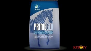 True Value Hardware TV Spot, 'ADM PrimeGlo Horse Feed' - Thumbnail 3
