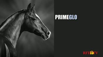 True Value Hardware TV Spot, 'ADM PrimeGlo Horse Feed' - Thumbnail 5