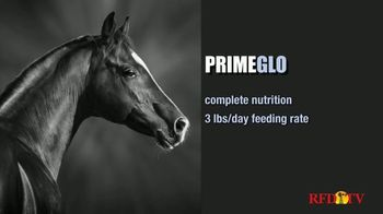 True Value Hardware TV Spot, 'ADM PrimeGlo Horse Feed' - Thumbnail 6