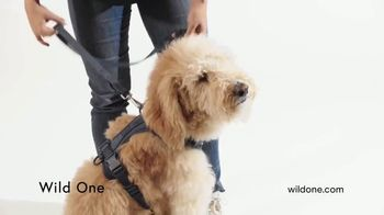 Wild One TV Spot, 'Cushioned and Comfy'