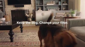 Filtrete TV Spot, 'Let's Clear the Air: Dog' - Thumbnail 5