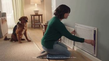 Filtrete TV Spot, 'Let's Clear the Air: Dog' - Thumbnail 6